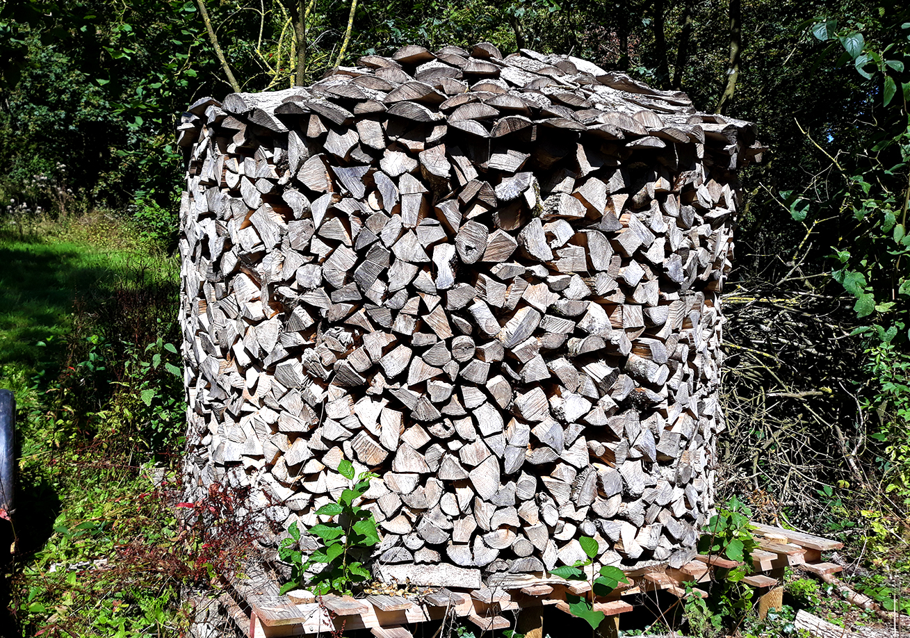 Ambrook Logs and Woodland Management