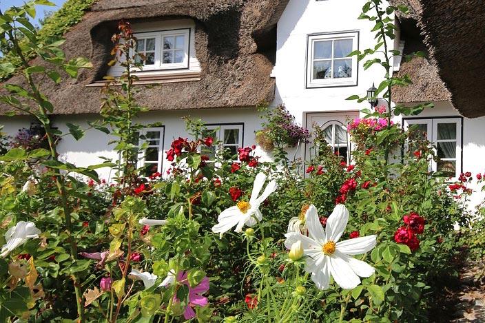 Ipplepen Cottage Garden Society